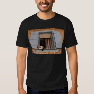 Cat in the window tshirts