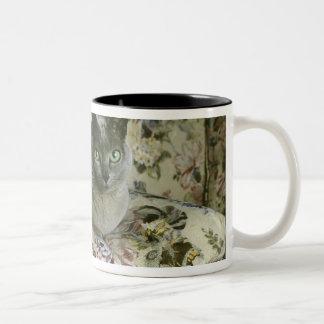 Cat, Minnie, Tonkinese. Two-Tone Mug