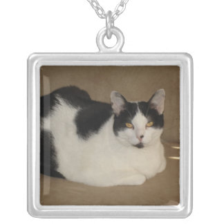 Cat On A Couch Square Pendant Necklace