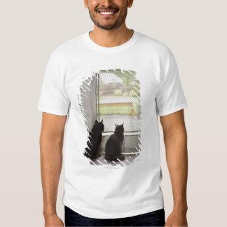 Cats looking out screen door t shirt