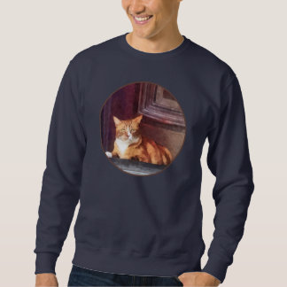 Cats - Orange Tabby in Doorway Pullover Sweatshirts