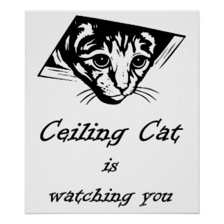 Ceiling Cat is Watching You Poster