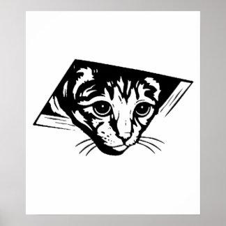Ceiling Cat Poster