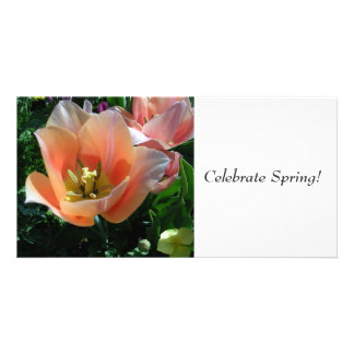 Celebrate Spring! Photo Greeting Card