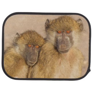 Chacma Baboon, two subadults in the early morning Floor Mat