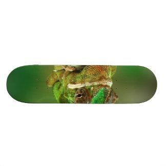 Chameleon Photo 21.3 Cm Mini Skateboard Deck
