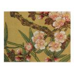 Cherry Blossoms Asian Japanese Art Postcard