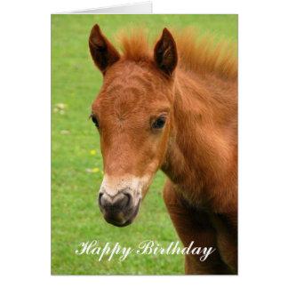Chesnut foal baby horse happy birthday card