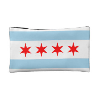 Chicago flag bag! makeup bag