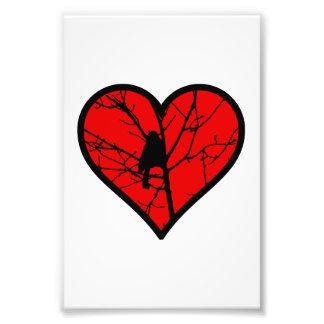 Chickadee Heart Love Birds Silhouette Photo Art