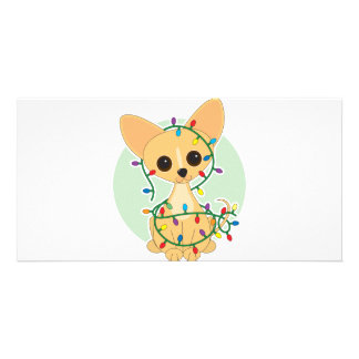 Chihuahua Lights Picture Card