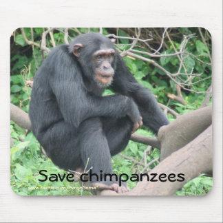 Chimp Sanctuary Mouse Pad