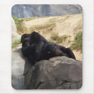 Chimps Napping Mouse Pad