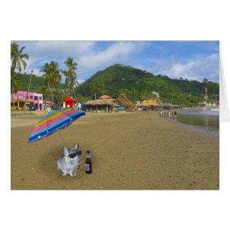 Chinchilla on the beach greeting card