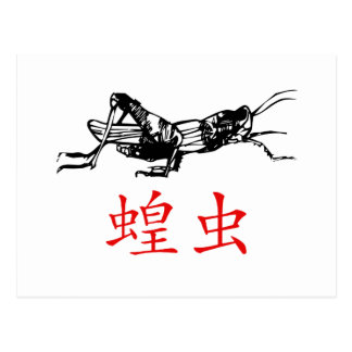 Chinese Grasshopper Postcard