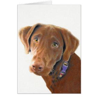 Chocolate Lab greeting card, dog card, retriever Greeting Card