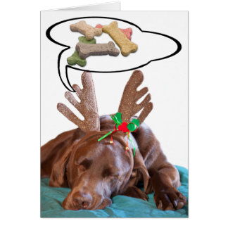 Chocolate Lab With Antlers And Treat Dreams Photog Greeting Card