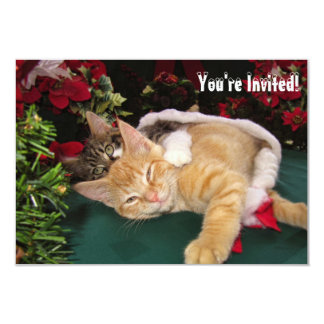 Christmas Cats, Cute Kittens Hugging, Kitty Smile 9 Cm X 13 Cm Invitation Card