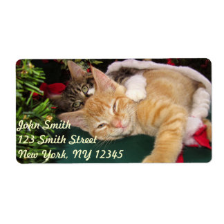 Christmas Cats, Cute Kittens Hugging, Kitty Smile Shipping Label