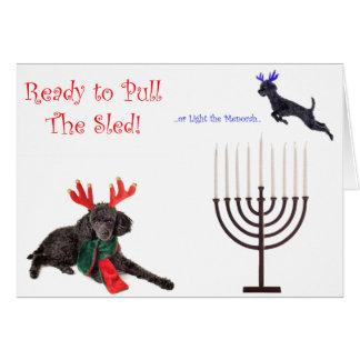 Christmas Hanukkah Poodle Dog w Menorah Greeting Card