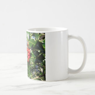 Christmas Holly Berries On Holly Tree Basic White Mug