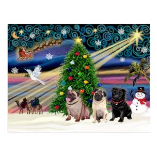 Christmas Magic Pugs (three, 2 fawn, 1 black) Postcard