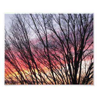 City Sunset, Boston, MA, 8x10 photo