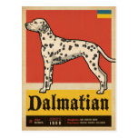 Classic Vintage Dalmation Postcard