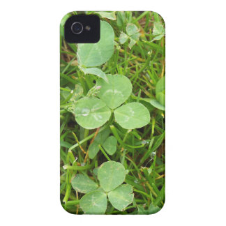 Clovers and Dew Drops iPhone 4 Case-Mate Cases