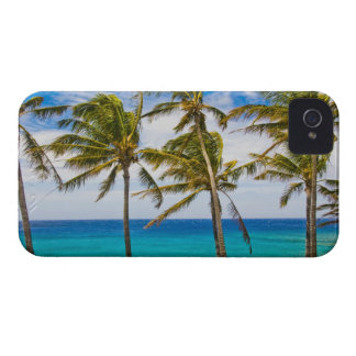 Coconut palm trees (Cocos nucifera) swaying in iPhone 4 Covers