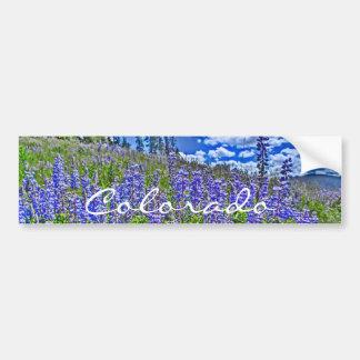 Colorado wildflower bumpersticker bumper sticker