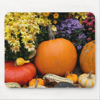 Colorful fall decorative pumpkin display mouse pad