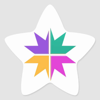 COLORFUL STAR champ winner LOWPRICE STORE GIFTS Star Sticker