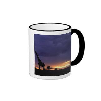 Colorful sunset late afternoon image of safari ringer mug