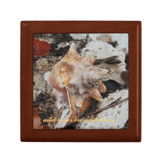 Conch Shell and Coral Small Square Gift Box