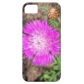 Corn Flower iPhone 5 Cases