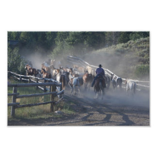 Cowboys Horses Ranch Life Photograph