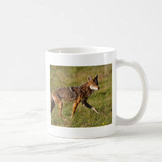 coyote basic white mug