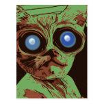 Crazy cat eyes postcard