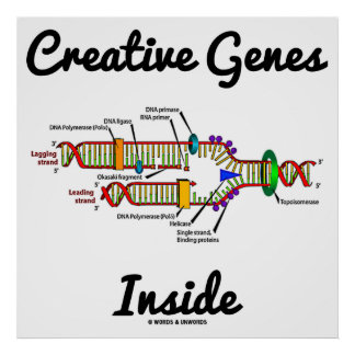 Creative Genes Inside (DNA Replication) Poster