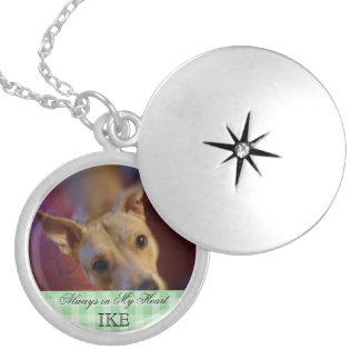 Customizable Pet Memorial Photo Keepsake Round Locket Necklace