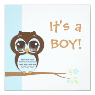 Cute Baby Owl It's a Boy Baby Shower Invitation