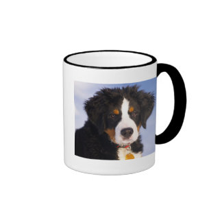 Cute Bernese Mountain Dog Puppy Picture Ringer Mug