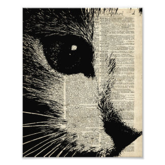 Cute Cat,Lovely Kitten Stencil Over Old Book Page Photo