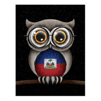 Cute Haitian Flag Owl Wearing Glasses Postcard