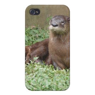 Cute Otter iPhone 4 Case