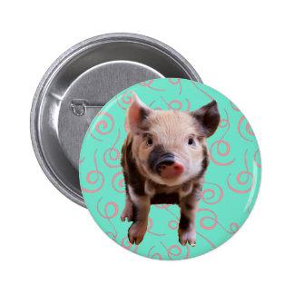 Cute Pig - Blue & Pink Swirls 6 Cm Round Badge