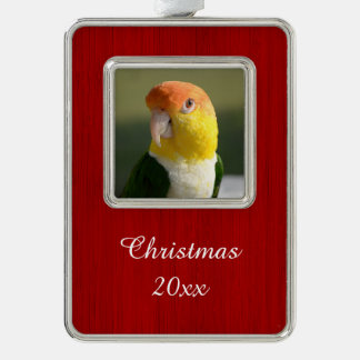 Cute White Bellied Caique Parrot Silver Plated Framed Ornament