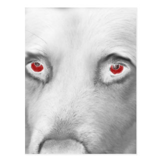 Cwn Annwn - Welsh Otherworldly Dogs of Death Postcard