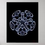 Cymatics: Music Note C Poster
